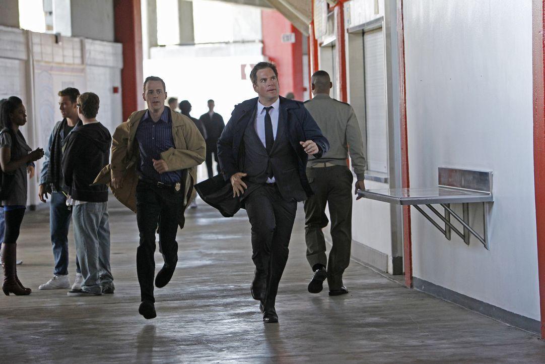 Bei den Ermittlungen in einem neuen Fall: McGee (Sean Murray, vorne l.) und DiNozzo (Michael Weatherly, vorne r.) ... - Bildquelle: CBS Television