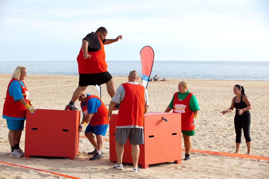 Gelingt es Ali (oben) und seinem Team die Kisten-Challenge zu gewinnen? Dem Sieger winkt ein Gewichtsbonus ... - Bildquelle: Enrique Cano SAT.1