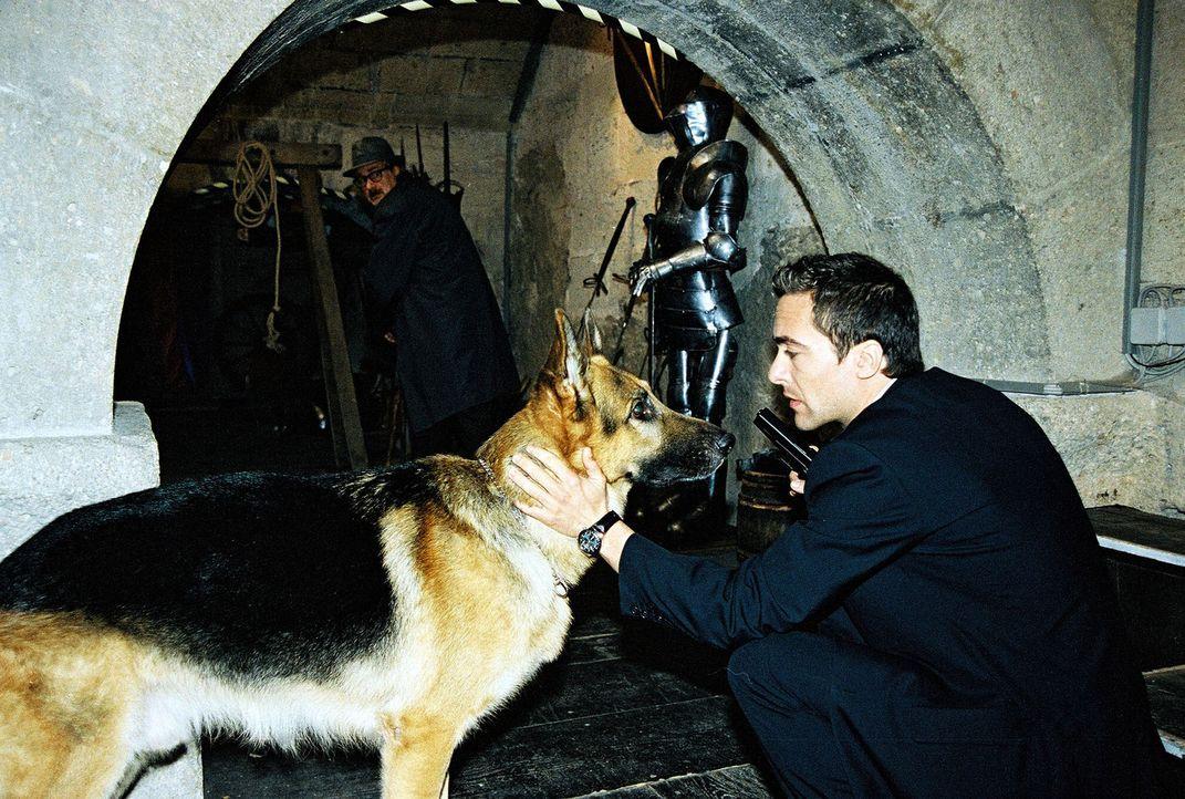 Zielsicher führt Rex sein Herrchen (Alexander Pschill) durch ein Labyrinth. - Bildquelle: Sat.1