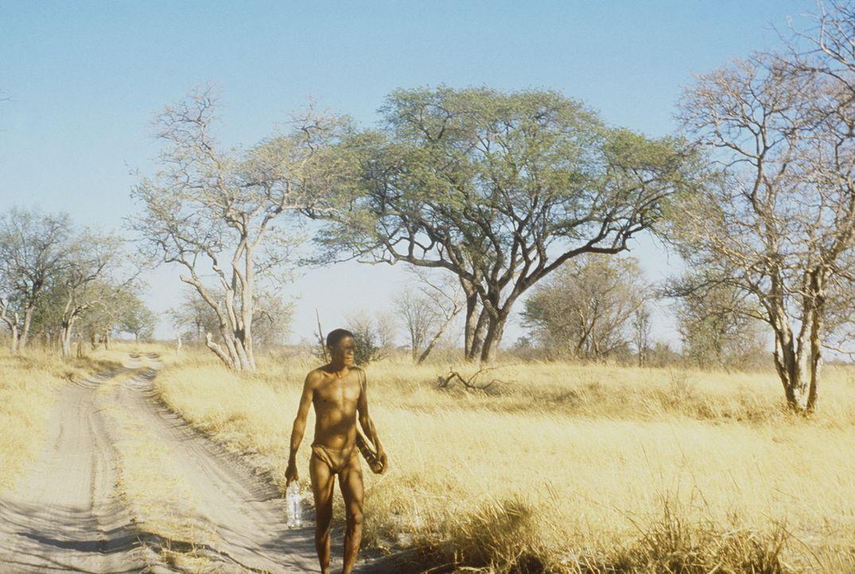 Buschmann Xixo (N!Xau) ist wieder einmal in der Kalahari-Wüste unterwegs. Doch diesmal will er kein Geschenk der Götter loswerden, sondern er ist... - Bildquelle: Columbia Pictures