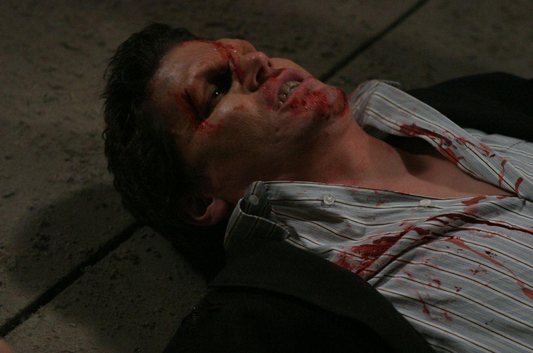 Wird von seinem Gegner Spike zur Strecke gebracht: Angel (David Boreanaz) - Bildquelle: The WB Television Network