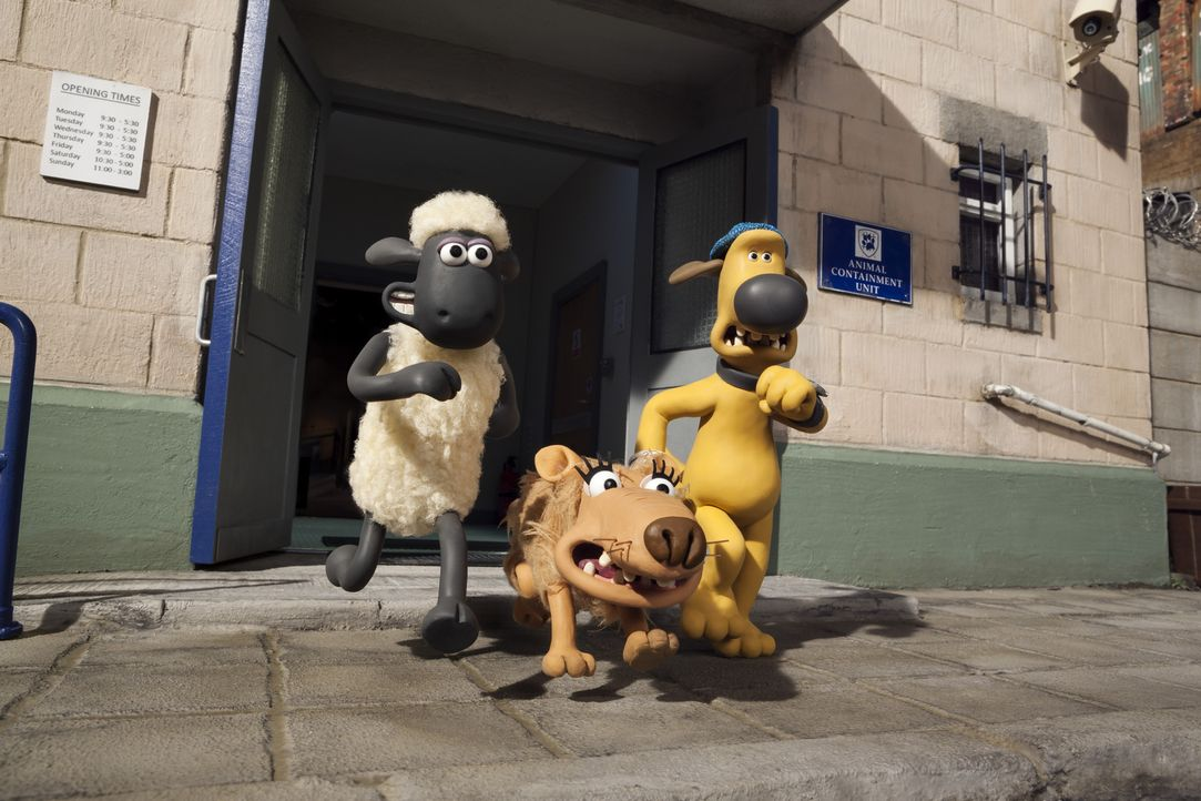 Können Shaun (l.), Herdenhund Blitzer (r.) und die Straßenhündin Slip (M.) dem Tierfänger und dem Tierheim entkommen? - Bildquelle: 2014 AARDMAN ANIMATIONS LIMITED AND STUDIOCANAL SA. A STUDIOCANAL RELEASE. ALL RIGHTS RESERVED.