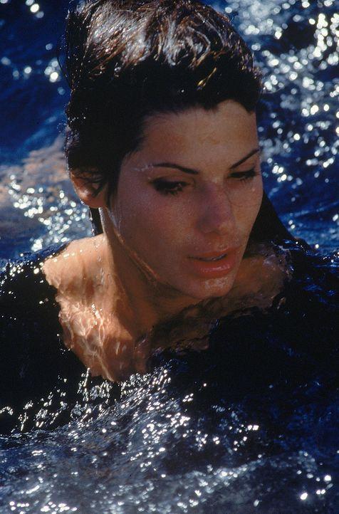 Die Kreuzfahrt durch die Karibik wird zum Desaster für Annie (Sandra Bullock) und die anderen Passagiere ... - Bildquelle: 1997 Twentieth Century Fox Film Corporation. All rights reserved.
