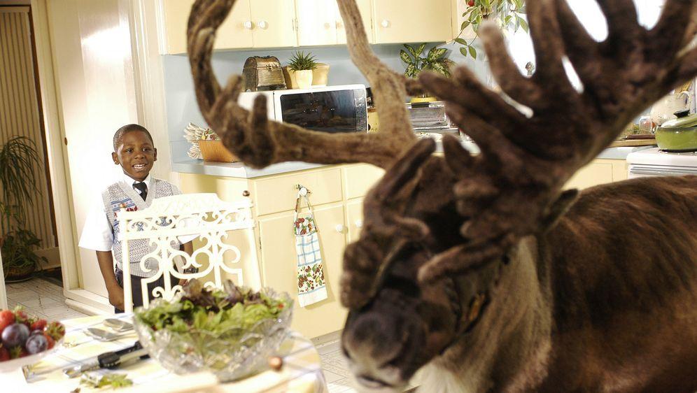 Oh du Fröhliche ... Rentier Buddy rettet Weihnachten - Bildquelle: Buena Vista International Television