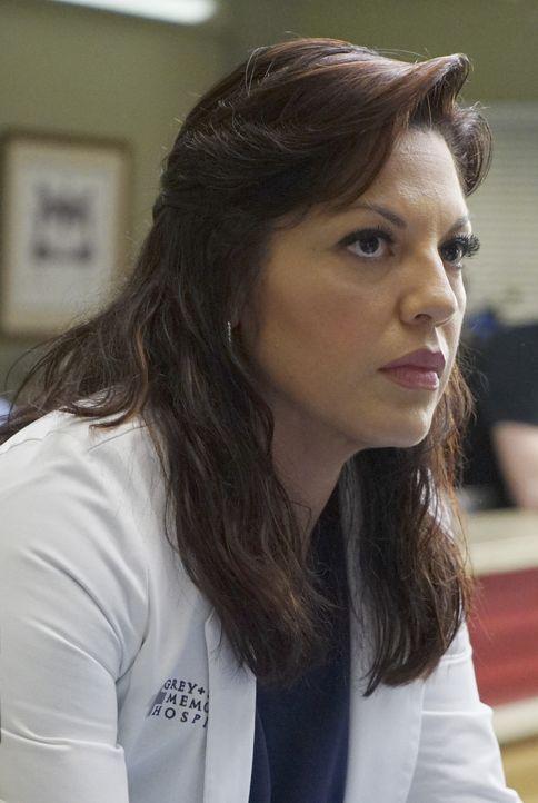 Im Krankenhaus geht es nach dem Tunneleinsturz weiter um Leben und Tod. Callie (Sara Ramirez) versucht alles, um die Verletzten zu retten ... - Bildquelle: ABC Studios