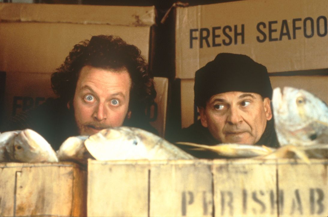 Auch das Ganovenduo, Marv (Daniel Stern, l.) und Harry (Joe Pesci, r.), ist nach dem Ausbruch aus dem Gefängnis ausgerechnet in New York gelandet ... - Bildquelle: 20th Century Fox Film Corporation