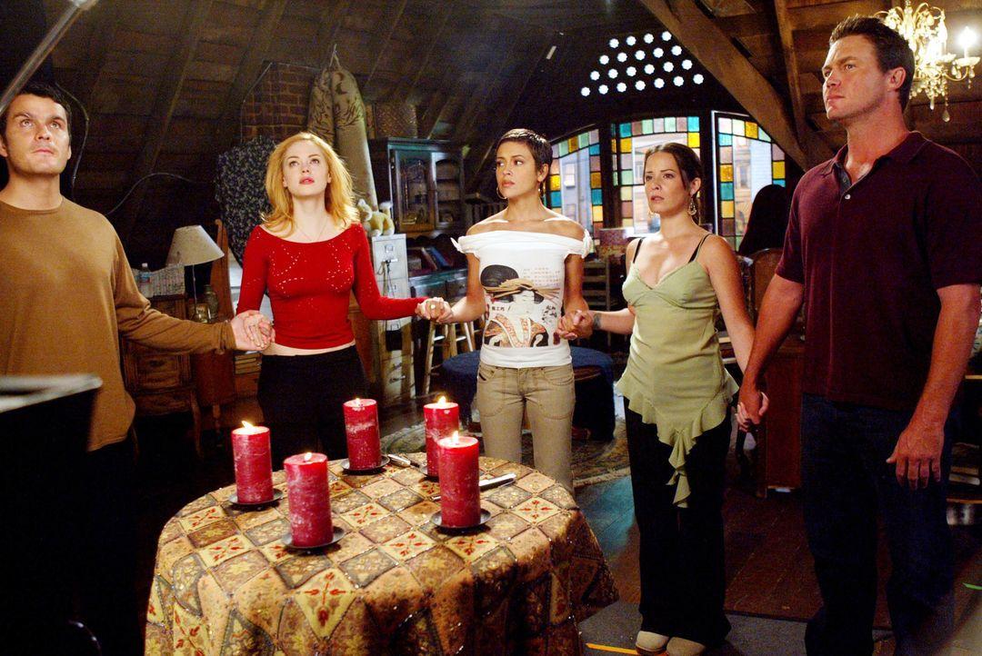 Berufen einen Friedensgipfel ein: Paige (Rosa McGowan, 2.v.l.), Richard (Balthazar Getty, l.), Phoebe (Alyssa Milano, M.), Piper (Holly Marie Combs,... - Bildquelle: Paramount Pictures.