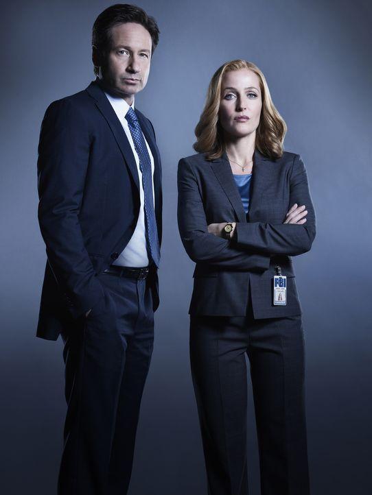 (1. Staffel) -Als ihnen bewusst wird, dass sie nie die ganze Wahrheit erkannt haben, flammt in Mulder (David Duchovny, l.) und Scully (Gillian Ander... - Bildquelle: 2016 Fox and its related entities.  All rights reserved.