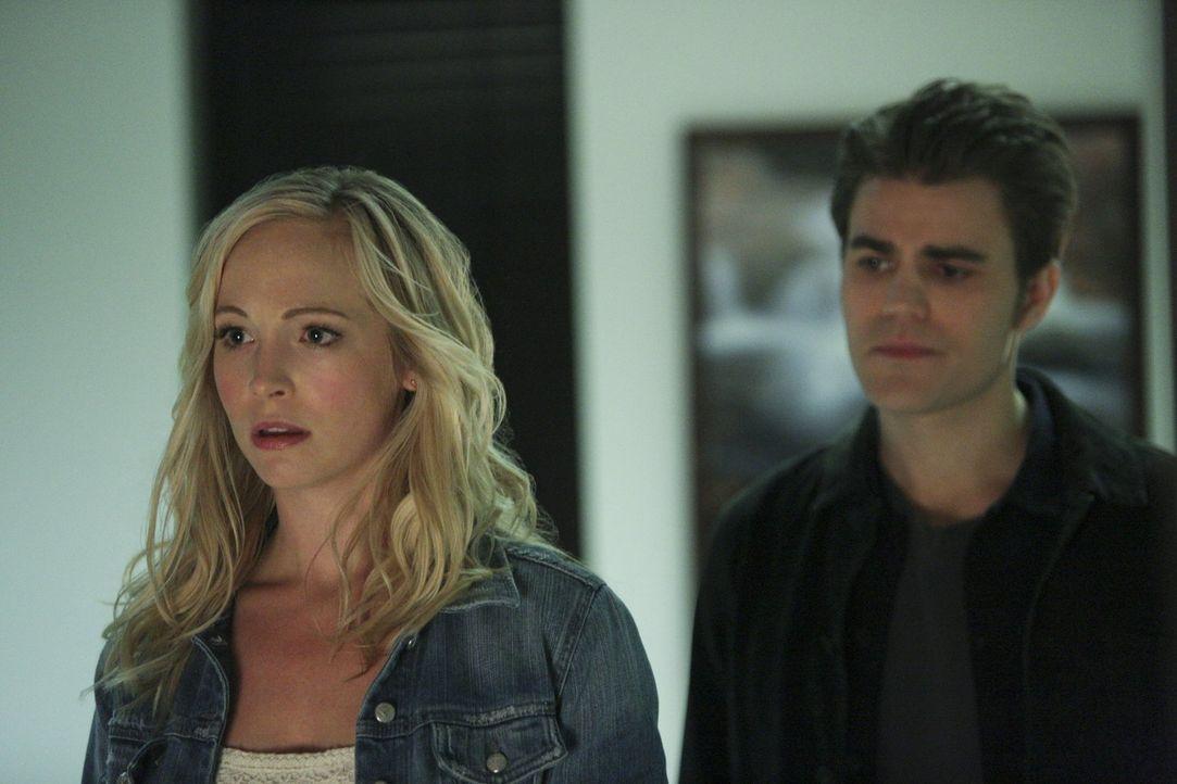 Während Stefan (Paul Wesley, r.) und Caroline (Candice Accola, l.) die verbleibende Zeit von Sheriff Forbes verschönern wollen, versucht Elena sich... - Bildquelle: Warner Bros. Entertainment, Inc