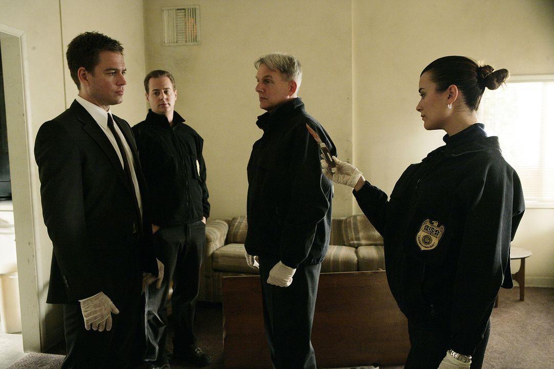 Gemeinsam ermitteln Tony (Michael Weatherly, l.), McGee (Sean Murray, 2.v.l.), Ziva (Cote de Pablo, r.) und Gibbs (Mark Harmon, 2.v.r.), um den Mör... - Bildquelle: CBS Television