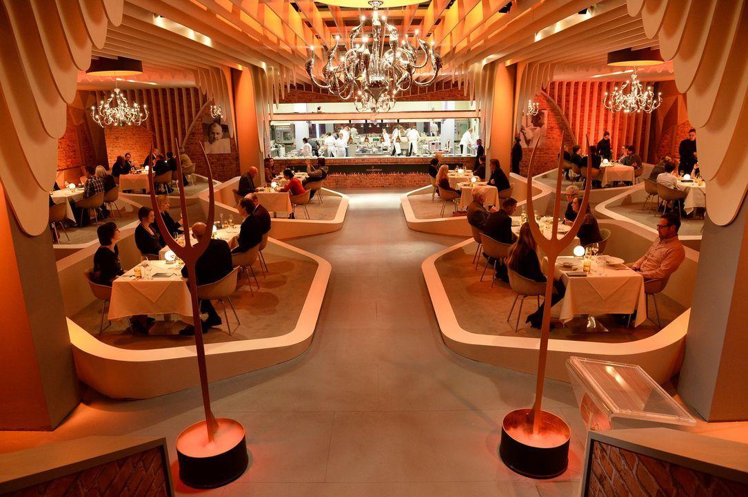 """Täglich müssen 60 Gäste mit einem Fünf-Gänge-Menü im """"Hell's Kitchen"""" Restaurant bewirtet werden ... - Bildquelle: Guido Engels SAT.1"""