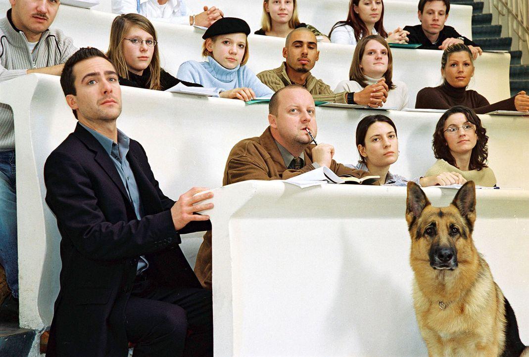 Marc (Alexander Pschill, l.), Kunz (Martin Weinek, 2.v.l.) und Rex sind in der Universität und hören sich dort einen Vortrag von Dr. Graf an. - Bildquelle: Ali Schafler Sat.1