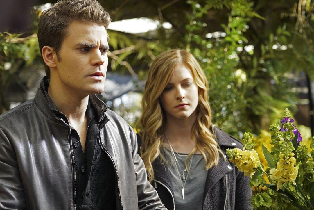 Stefan (Paul Wesley, l.) und Valerie (Elizabeth Blackmore, r.) suchen nach einem Kraut, dass Stefan vor Raynas Zauber beschützen könnte, doch dann m... - Bildquelle: Warner Bros. Entertainment, Inc.