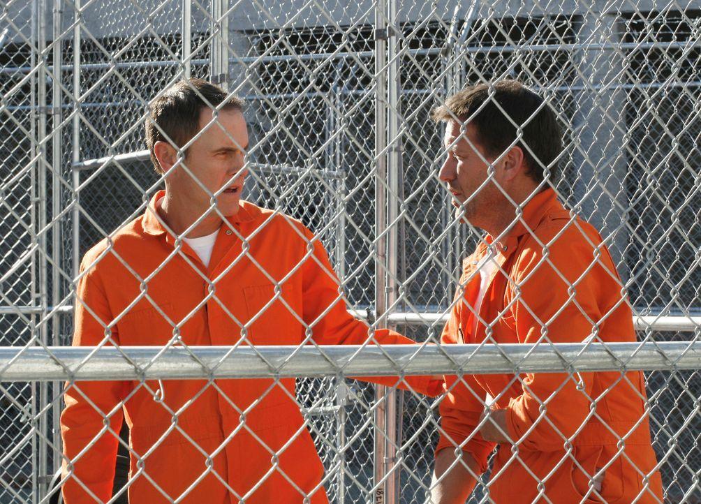 Mike (James Denton, r.) wird im Gefängnis von zwei Insassen zusammengeschlagen und ausgerechnet Paul (Mark Moses, l.) kommt ihm zu Hilfe, der allerd... - Bildquelle: 2005 Touchstone Television  All Rights Reserved