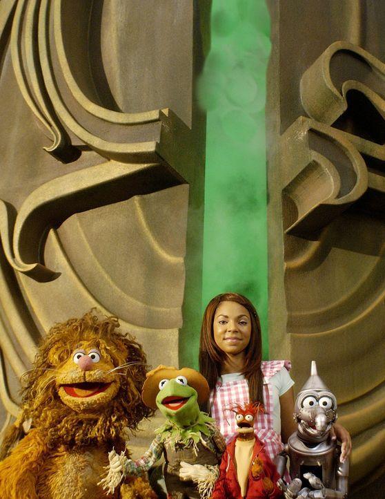 Machen sich auf, den Zauberer von Oz zu finden: (v.l.n.r.) Löwe, Vogelscheuche, Dorothy (Ashanti) und Tin Man ... - Bildquelle: The Muppets Holding Company, LLC. MUPPETS characters and elements are trademarks of the Muppet Holding Company, LLC.  All rights reserved