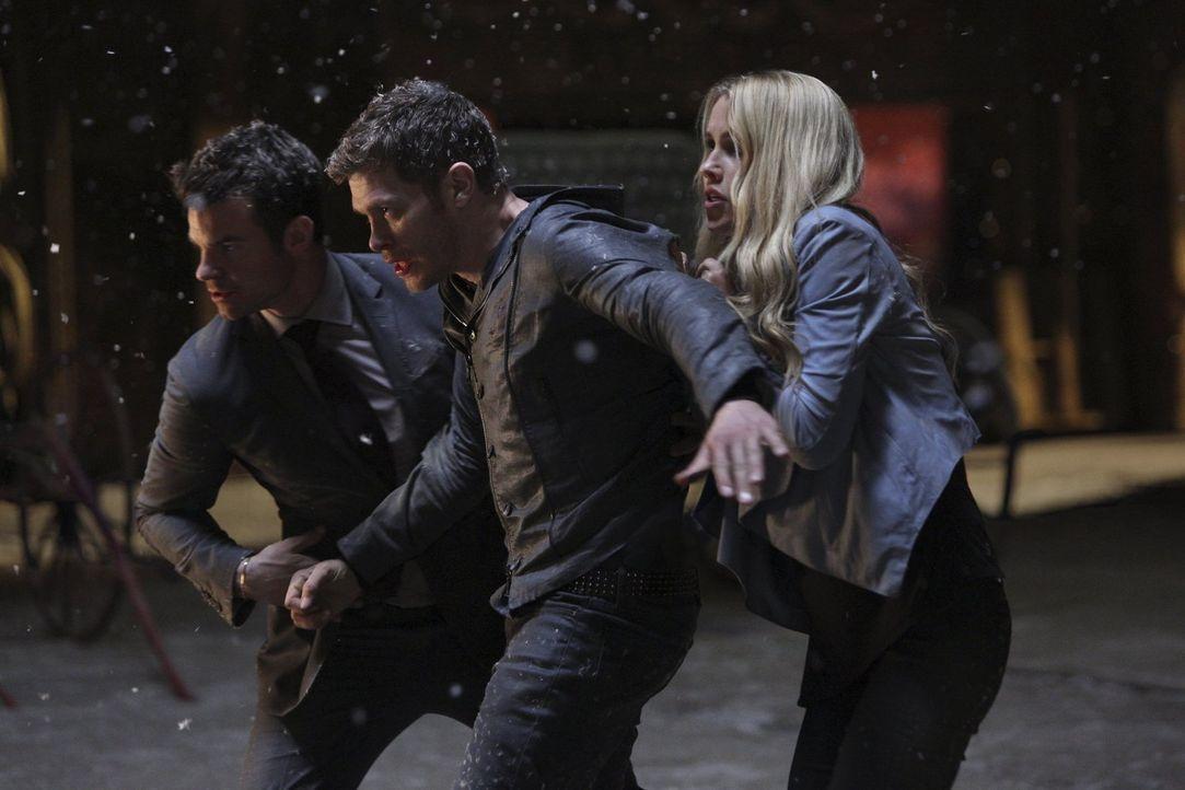 Cami offenbart  Elijah (Daniel Gillies, l.) und Rebekah (Claire Holt, r.) eine wichtige Erkenntnis, die sie wieder auf eine Seite mit Klaus (Joseph... - Bildquelle: Warner Bros. Entertainment, Inc