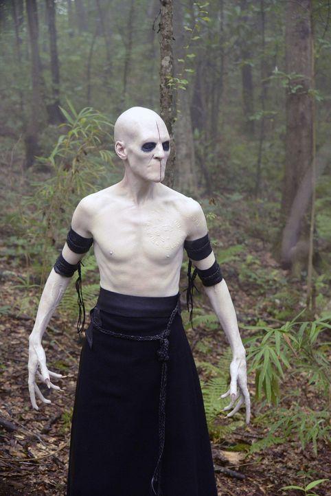Das Böse kehrt nach Sleepy Hollow zurück: der Sandmann (Marti Matulis) ... - Bildquelle: 2013 Twentieth Century Fox Film Corporation. All rights reserved.