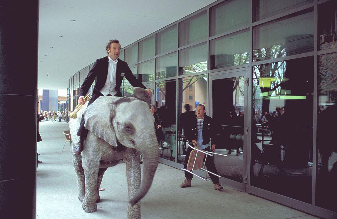 Um das Elefantenkind zu retten, wagt Lennard (Peter Lohmeyer) das Unmögliche ... - Bildquelle: Leslie Haslam ProSieben
