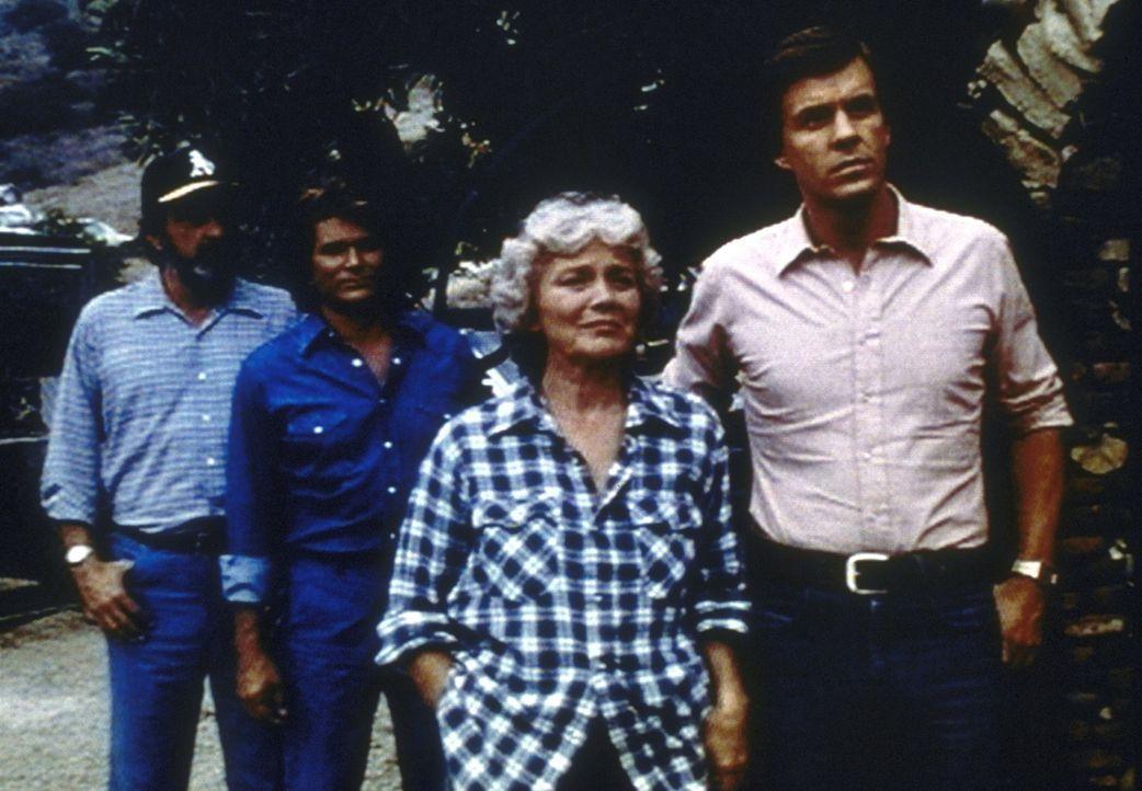 Zufrieden beobachten Jonathan (Michael Landon, 2.v.l.) und Mark (Victor French, l.) , wie Arthur Krock verhindert, dass Gwen (Jean Allison, 2.v.r.)... - Bildquelle: Worldvision Enterprises, Inc.