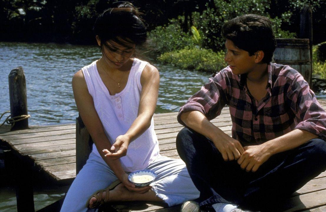 """Ein Lichtblick im """"Land der aufgehenden Sonne"""": Der Amerikaner Daniel (Ralph Macchio, r.) verliebt sich in die charmante Japanerin Kumiko (Tamlyn To... - Bildquelle: Columbia Pictures"""