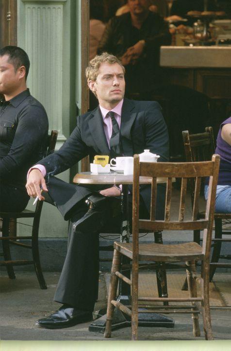 Nach und nach merkt Alfie (Jude Law), dass es auch was anderes gibt, als Frauenherzen zu sammeln ... - Bildquelle: Paramount Pictures