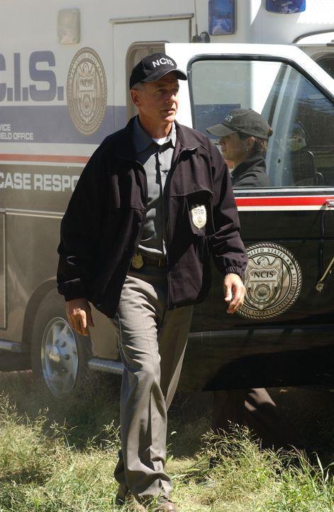 Bei ihren Recherchen nach der Identität des Zivilisten, stoßen Gibbs (Mark Harmon) und sein Team bald auf Tobias Fornell vom FBI ... - Bildquelle: CBS Television