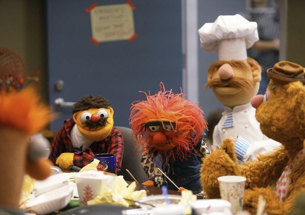 Die Crew um Lew Zealand (l.), das Tier (2.v.l.), der dänische Koch (2.v.r.) und Fozzie (r.) müssen sich was einfallen lassen, damit sie von Marketin... - Bildquelle: Andrea McCallin ABC Studios
