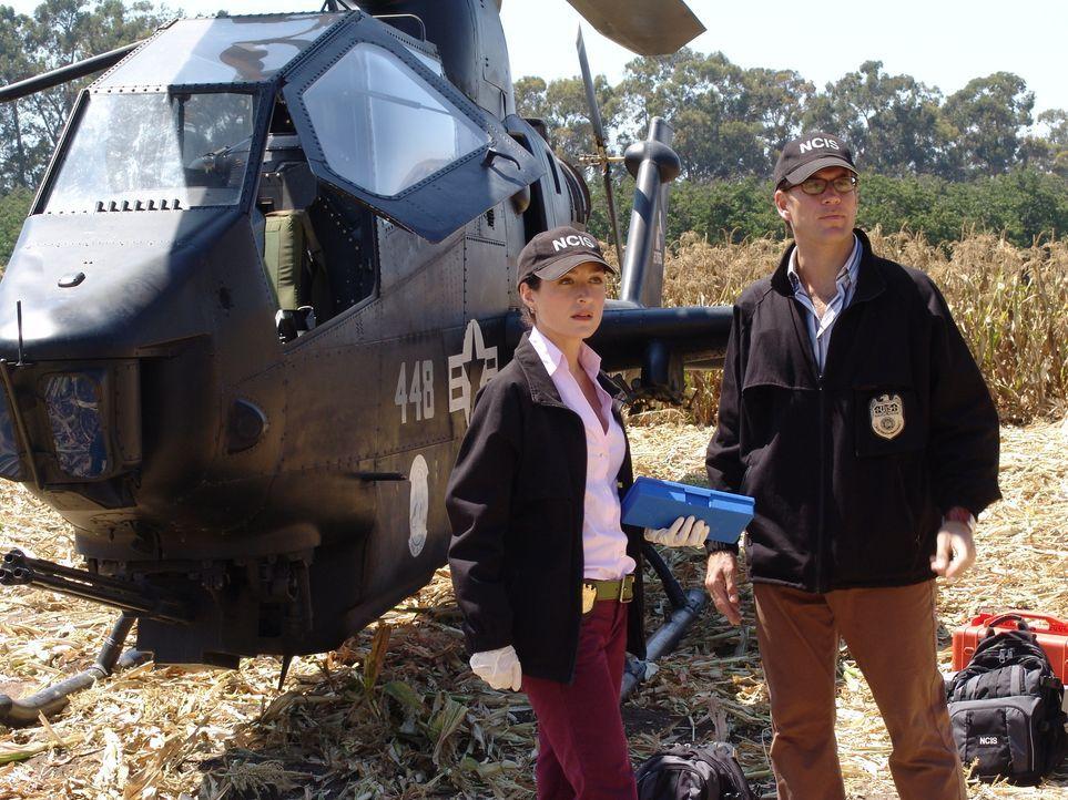 Alienalarm im NCIS: Kate (Sasha Alexander, l.) und Tony (Michael Weatherly, r.) gehen dem nach ... - Bildquelle: CBS Television