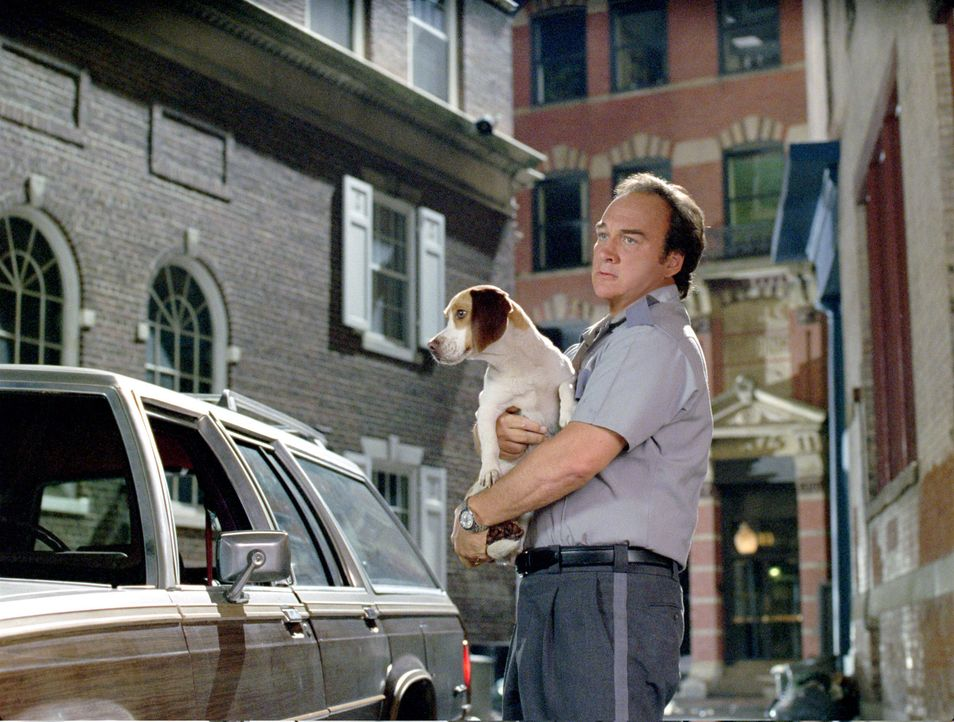 Hat plötzlich einen Hund, der sprechen kann: Dan Unger (James Belushi) ... - Bildquelle: Walt Disney Pictures.  All rights reserved