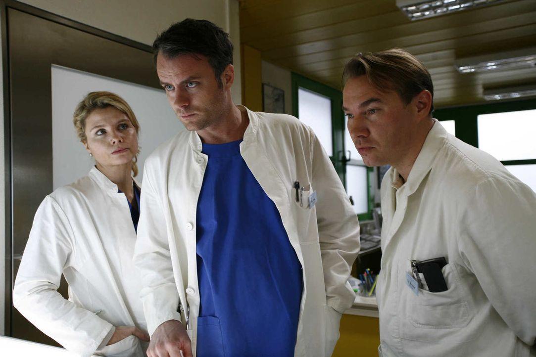 Die Zeit der Rache ist gekommen: (v.l.n.r.) Sarah (Annette Frier), Leo (André Röhner) und Reisser (Thomas Arnold) ... - Bildquelle: Volker Roloff SAT.1