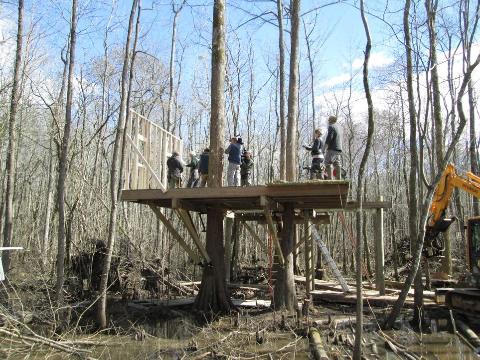 Für die Baumhaus-Helden heißt es in Windsor mal wieder ran an den Baum: Mitten im Sumpf-Gebiet sollen sie Baumhäuser für Kayaker, Fischer und andere... - Bildquelle: 2016,DIY Network/Scripps Networks, LLC. All Rights Reserved