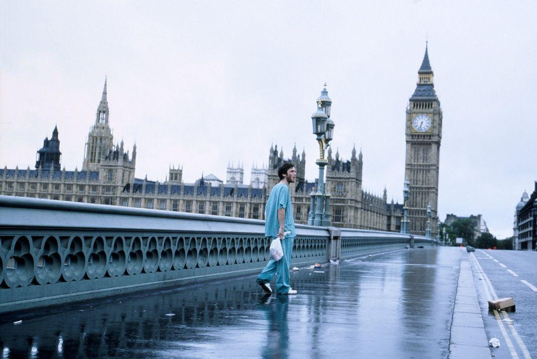 Vollkommen verwirrt sucht Jim (Cillian Murphy) auf den leeren Straßen von London nach Menschen und findet sich in der Hölle auf Erden wieder ... - Bildquelle: 2002 Twentieth Century Fox Film Corporation. All rights reserved.