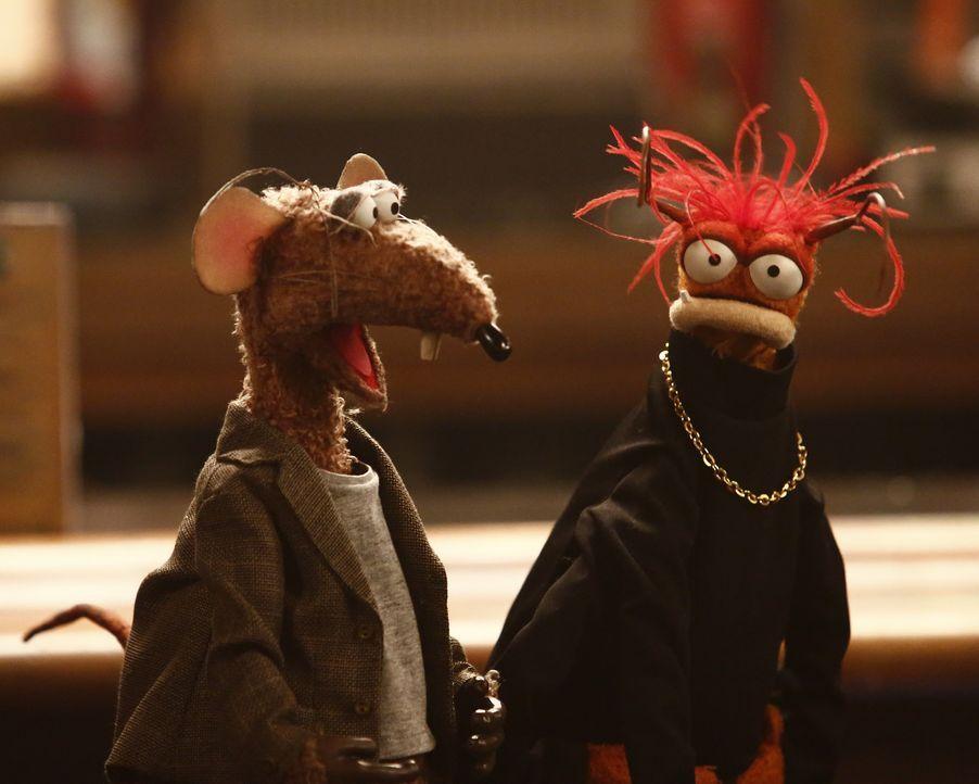 Sehen sich gezwungen, einen neuen dritten Kumpel zu suchen, da Gonzo viel Zeit mit Camilla verbringt: Pepe (r.) und Rizzo (l.) ... - Bildquelle: Nicole Wilder ABC Studios