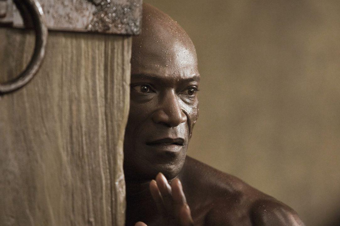 Auf ihn warten neue Herausforderungen: Drago (Peter Mensah) ... - Bildquelle: 2010 Starz Entertainment, LLC