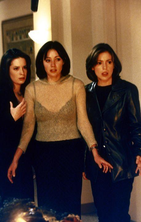 Piper (Holly Marie Combs, l.), Prue (Shannen Doherty, M.) und Phoebe (Alyssa Milano, r.) werden von Rex Buckland gezwungen, ihm ihre Kräfte zu gebe... - Bildquelle: Paramount Pictures