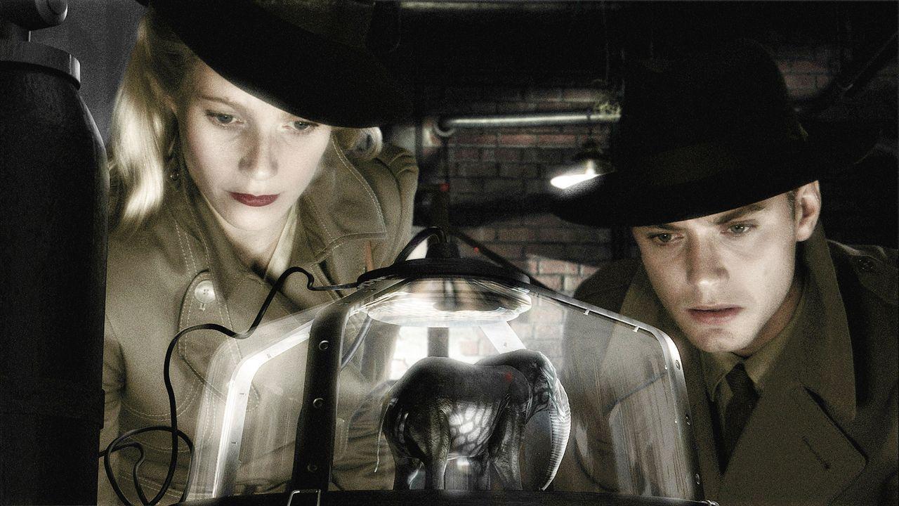 """Einzig """"Chronicle""""-Reporterin Polly Perkins (Gwyneth Paltrow, l.) und Flieger-As Joe """"Sky Captain"""" Sullivan (Jude Law, r.) können die Menschheit vor... - Bildquelle: TM & Copyright   Brooklyn Films II And Filmauro S.R.L."""