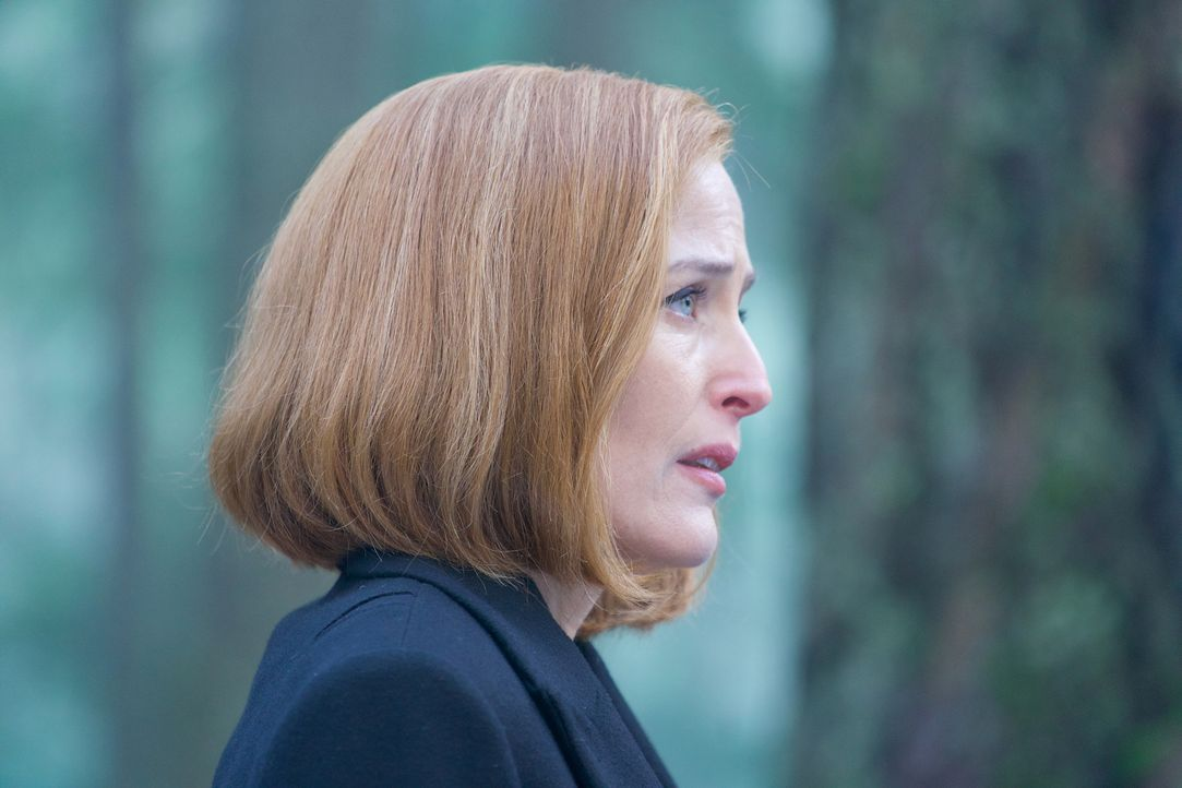 Obwohl die örtlichen Polizisten von einem Tierangriff ausgehen, erstellt Scully (Gillian Anderson) ein Täterprofil, denn sie ist überzeugt davon, da... - Bildquelle: Shane Harvey 2018 Fox and its related entities.  All rights reserved.