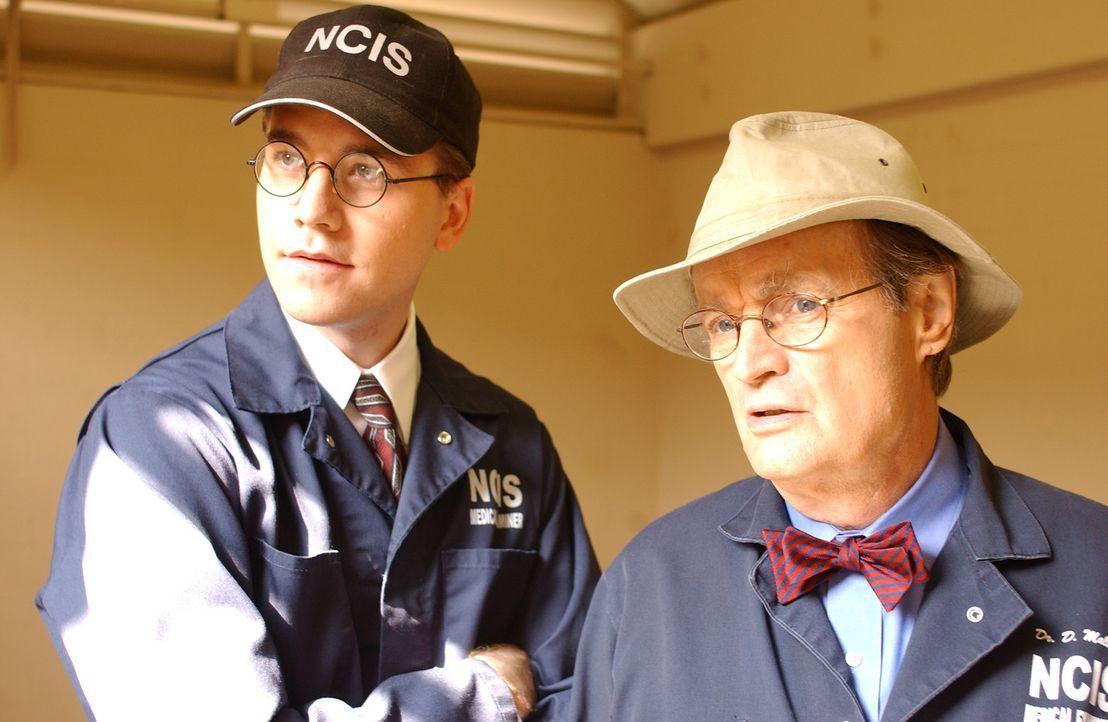 Nachdem die Leiche einer jungen Navy-Angehörigen gefunden wurde, sind Jimmy Palmer (Brian Dietzen, l.) und Ducky Mallard (David McCallum, r.) gefra... - Bildquelle: CBS Television