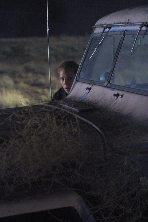 Ihr Auto bleibt irgendwo in der Einöde liegen und dann taucht auch noch ein Pärchen auf, das auf Mary (Mary McCormack) und ihre Kollegen zu schießen... - Bildquelle: USA Network