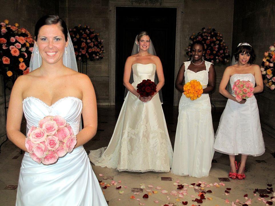 """Nyle (r.), Emily (2.v.l.), Chelsea (l.) und Shayla (r.) treten an, im Wettkampf um das schönste Hochzeitsfest. Viermal """"Ja"""" - Viermal der Wille zu... - Bildquelle: 2011 Discovery Communications, LLC"""