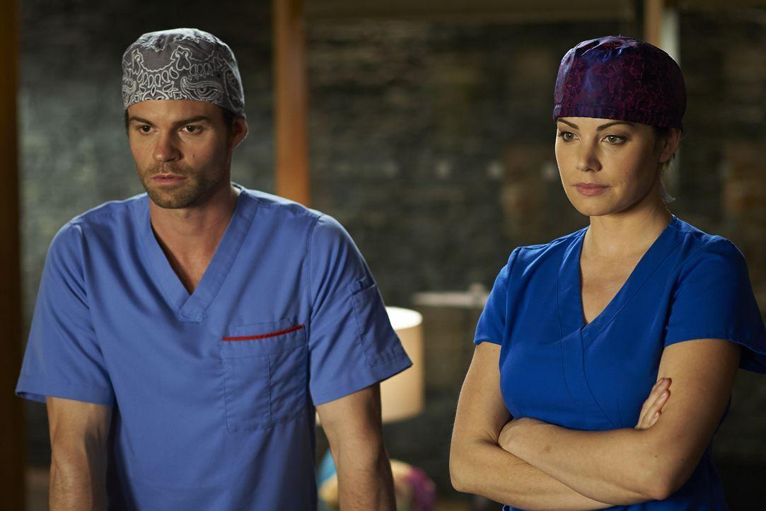 Das Berufsleben als Ärzte beeinflusst auch immer das Privatleben von Alex (Erica Durance, r.) und Joel (Daniel Gillies, l.) ... - Bildquelle: 2013  Hope Zee Two Inc.