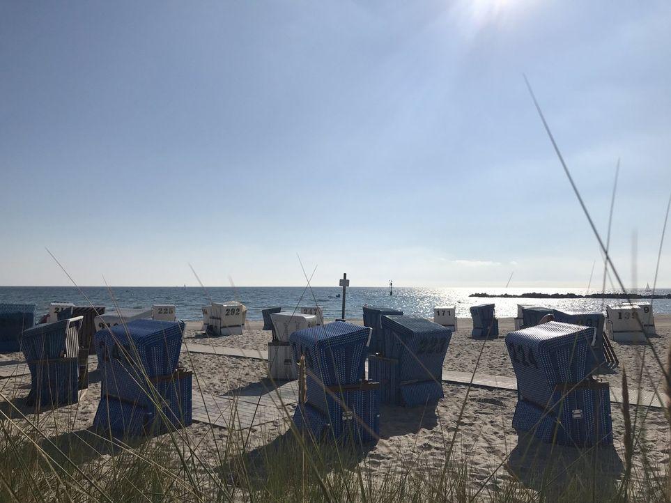 Im hohen Norden lädt vier Kilometer feinster Sandstrand im Ostseebad Damp zum ausgedehnten Badeurlaub ein. Stellt sich nur noch die Gretchenfrage: S... - Bildquelle: kabel eins