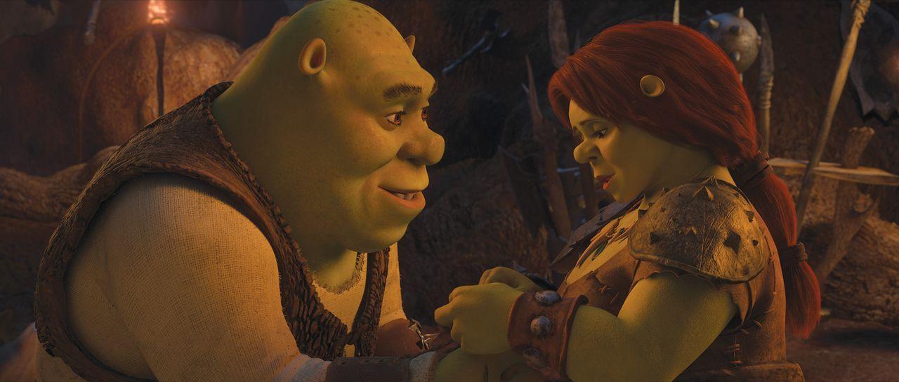 Wird sich Fiona (r.) auch in der alternativen Parallelwelt in Shrek (l.) verlieben? Das wäre zumindest die Voraussetzung für eine Rückkehr in die... - Bildquelle: 2012 DreamWorks Animation LLC. All Rights Reserved.