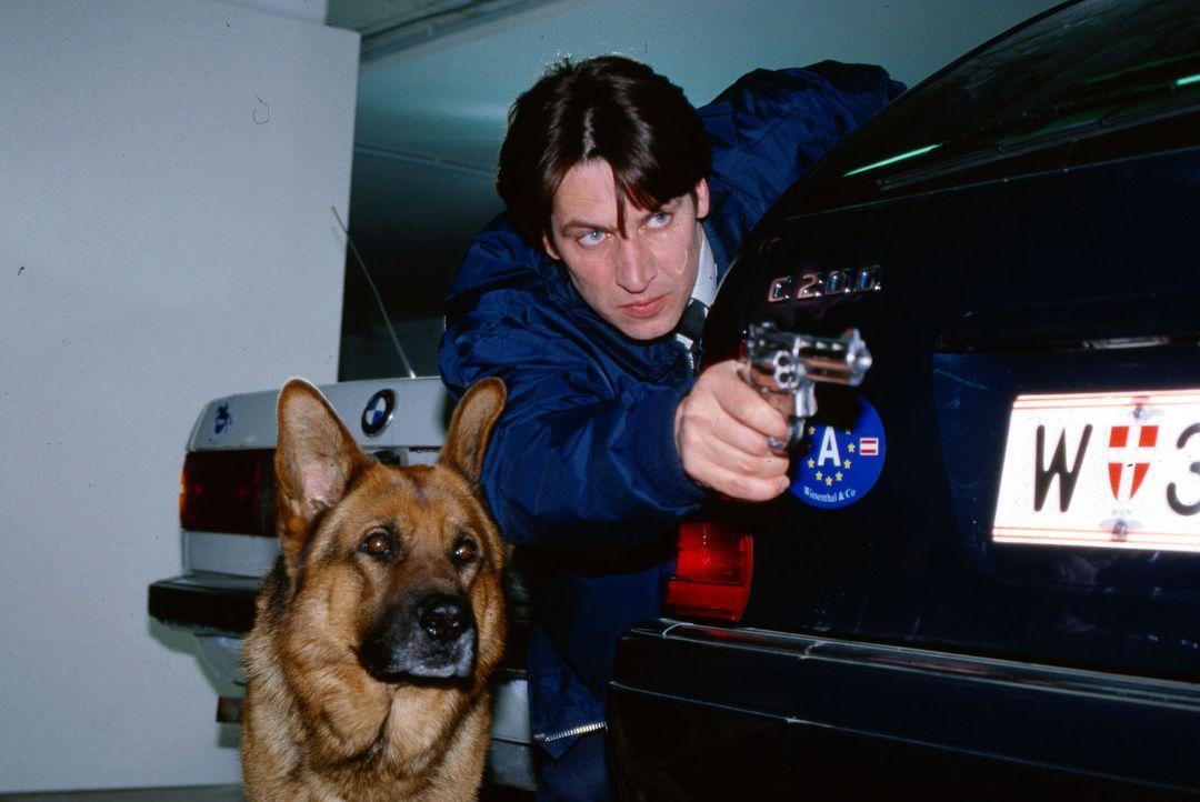 Kommissar Moser (Tobias Moretti) und Rex verfolgen Josef Nowak, den Ex-Mann der ermordeten Eva Münch. - Bildquelle: Ali Schafler Sat.1