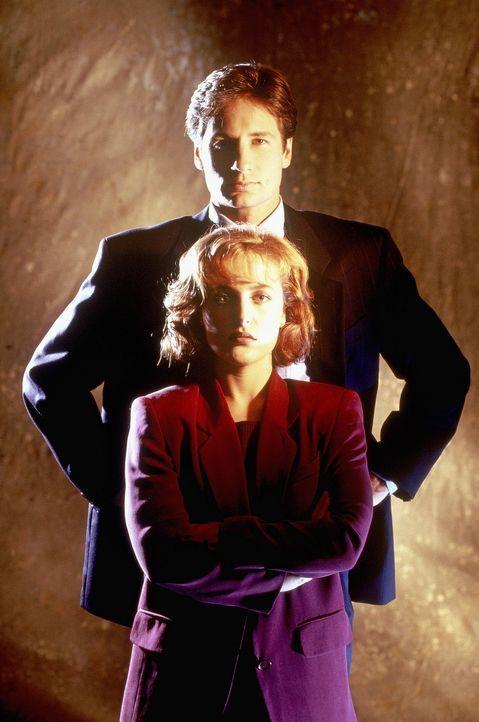 (2. Staffel) - Die FBI-Agenten Fox Mulder (David Duchovny, hinten) und Dana Scully (Gillian Anderson, vorne) erforschen ungewöhnliche Phänomene. - Bildquelle: TM +   Twentieth Century Fox Film Corporation. All Rights Reserved.