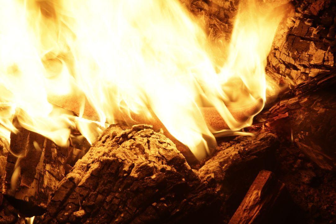 Als die verbrannten Knochen der Fotografin Teresa Halbach auf seinem Gelände gefunden werden, steht Steven Avery unter Mordverdacht - irrt sich die... - Bildquelle: 2016 AMS Pictures. All Rights Reserved