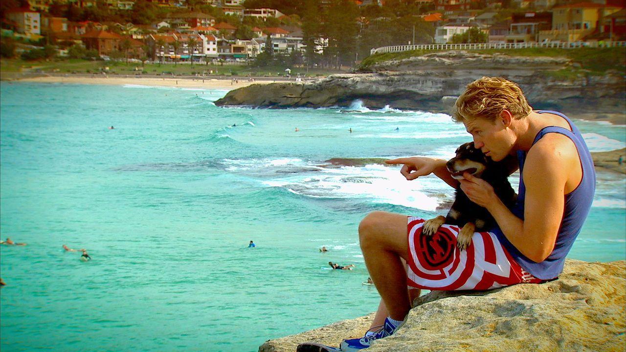 Dr. Chris Brown ist Tierarzt am berühmten Bondi Beach. Zusammen mit seinem Hund Rusty verbringt er möglichst viel Zeit am bekanntesten Strand Austra... - Bildquelle: Network Ten, Australia