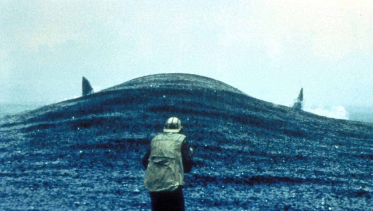Der Angler ahnt nicht, dass er einen größeren Fisch am Haken hat, als in seinen kühnsten Träumen je erträumt ... - Bildquelle: 1998 TriStar Pictures, Inc. All Rights Reserved.