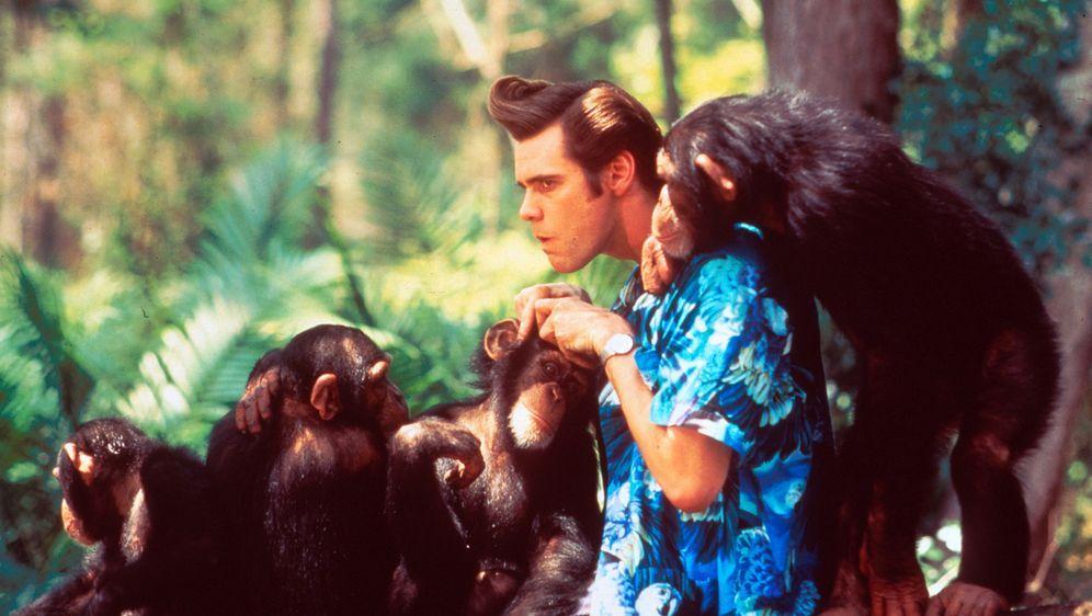 Ace Ventura - Jetzt wird's wild - Bildquelle: Warner Bros. GmbH
