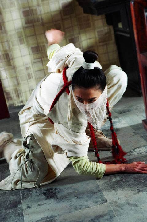 Durch Zufall gelangt die junge Adelige Schwarzer Phoenix (Cecilia Cheung) in den Besitz großartiger Kräfte - den Martial Arts-Kampfkünsten des We... - Bildquelle: 2004 China Star Worldwide Distribution B.V. All Rights Reserved.